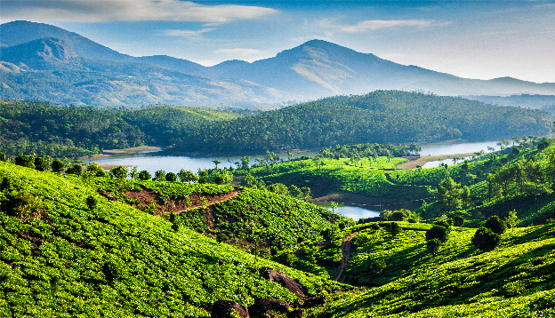 Tea plantations and Muthirappuzhayar River in hills near Munnar, Kerala, India. Photo Credit: Shutterstock.